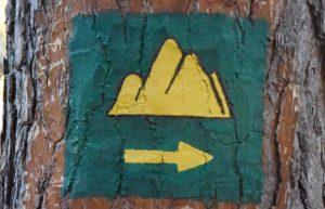 znak w prawo